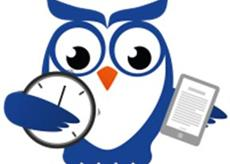 TCE AM – ANALISTA DE CONTROLE EXTERNO – MINISTERIO PUBLICO – FGV (E) 2020.1